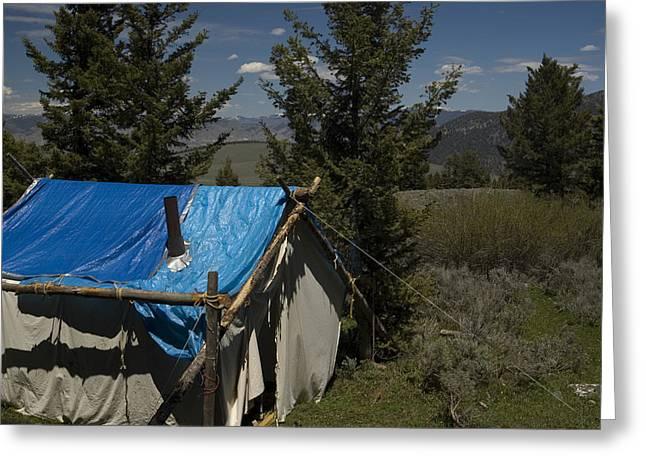 Deer Camp Greeting Cards - Bear Camp Greeting Card by Sara Stevenson