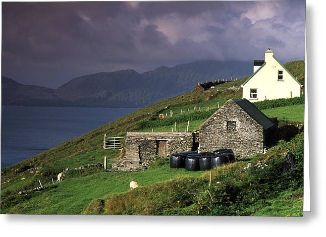 Farm Structure Greeting Cards - Beara Peninsula, County Cork, Ireland Greeting Card by Richard Cummins