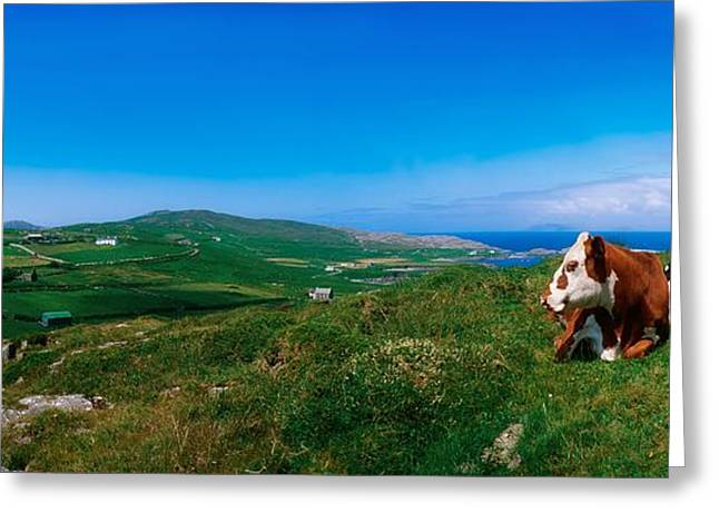 West Cork Greeting Cards - Beara Peninsula, West Cork, County Greeting Card by The Irish Image Collection
