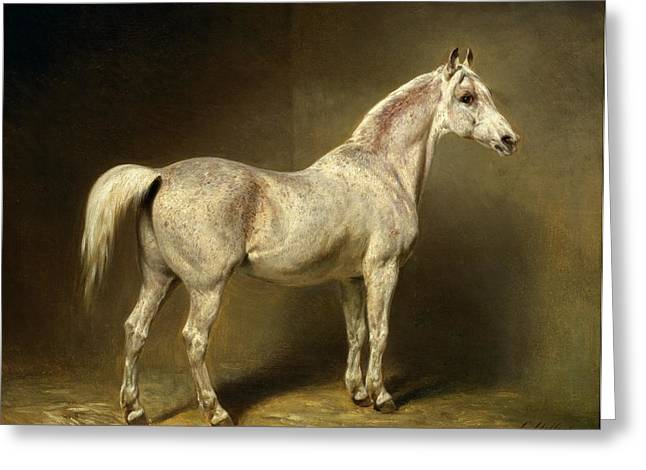 Equestrianism Greeting Cards - Beatrice Greeting Card by Carl Constantin Steffeck