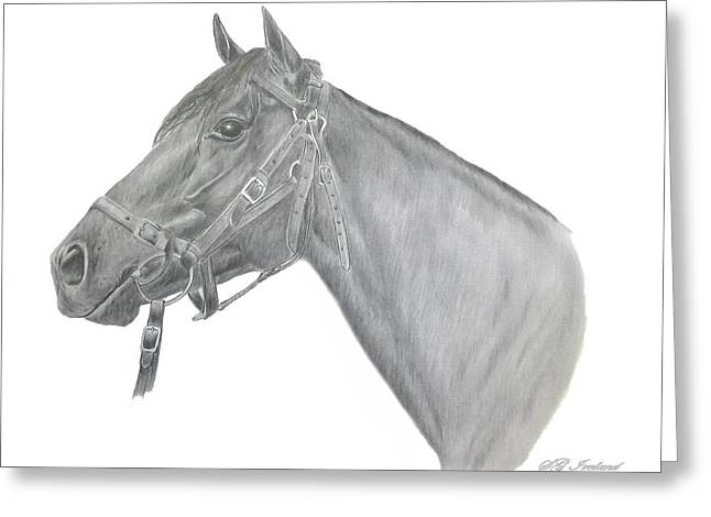 Bred Drawings Greeting Cards - Beau Greeting Card by Sue Ireland
