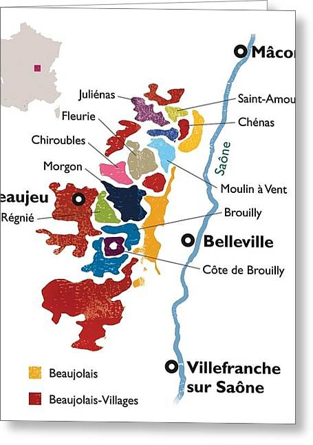 Beaujolais Greeting Cards - Beaujolais Greeting Card by None