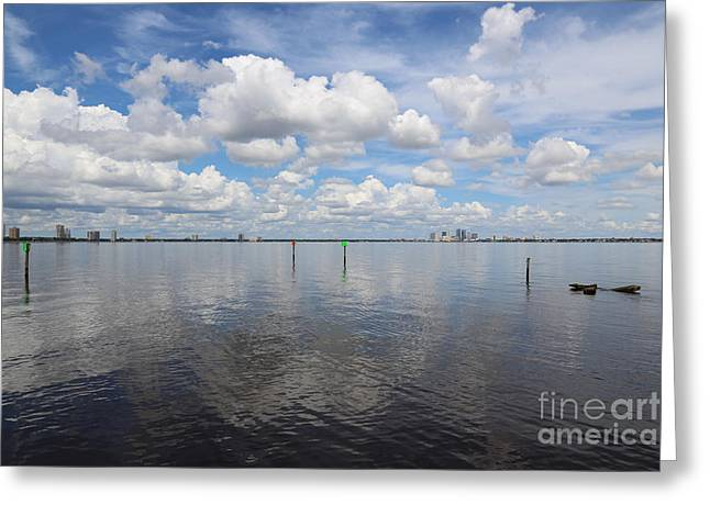 Beautiful Day In Tampa Greeting Card by Carol Groenen