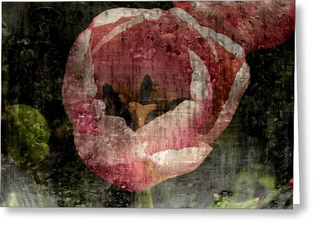 The Hills Digital Art Greeting Cards - Beautiful Decay Greeting Card by Bonnie Bruno
