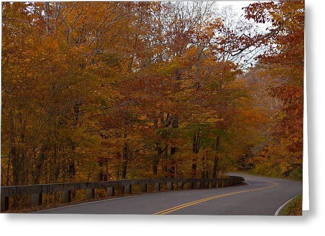 Foliage Photographs Greeting Cards - Beautiful Drive Greeting Card by Robert  Torkomian