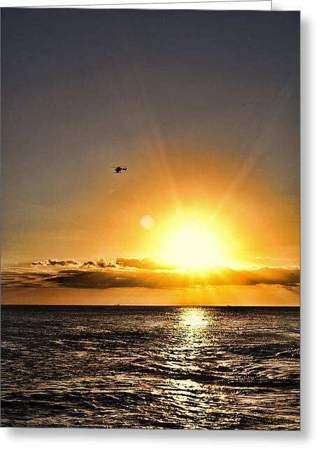 Ko Olina Lagoon Greeting Cards - Beautiful Flight Greeting Card by Sheri Bartoszek