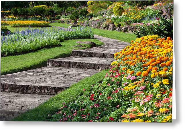 Showing Greeting Cards - Beautiful Flowers In Park Greeting Card by Atiketta Sangasaeng
