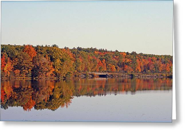 Kkphoto1 Greeting Cards - Beautiful Reflections Greeting Card by Kay Novy
