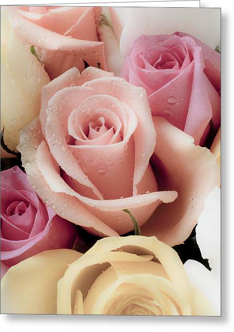 Fragrance Greeting Cards - Beautiful Roses Greeting Card by Garry Gay