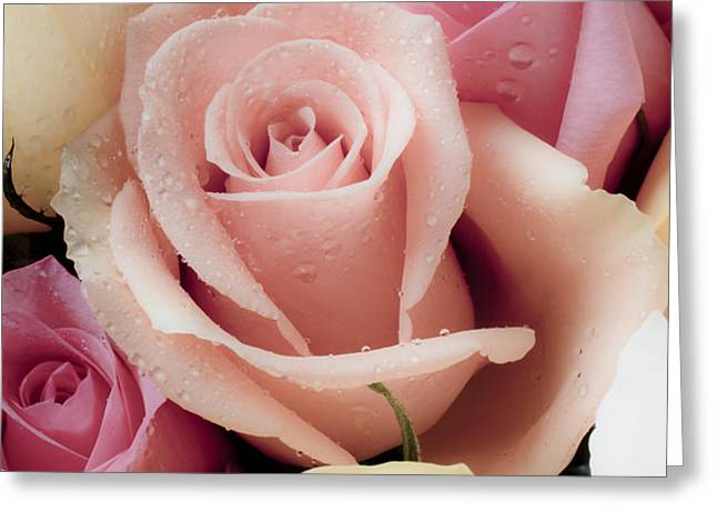 Beautiful Roses Greeting Card by Garry Gay