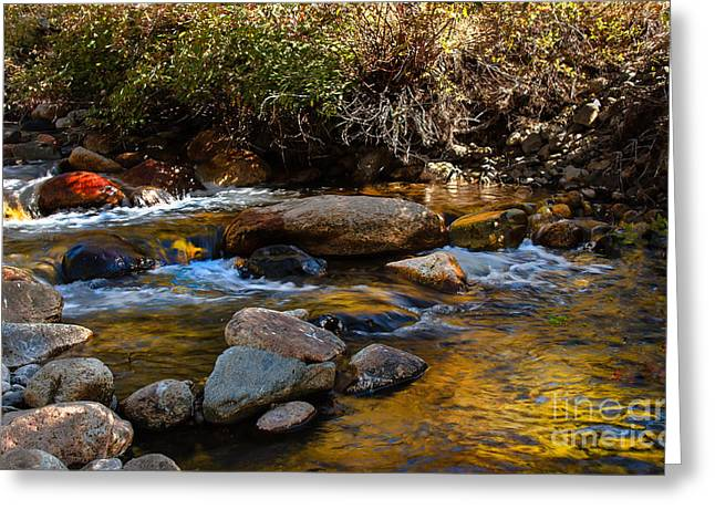 Picturesqueness Greeting Cards - Beautiful Stream Greeting Card by Robert Bales