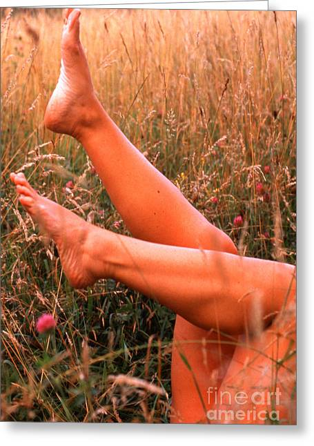 Long Luscious Legs Greeting Cards - Beauty in a Hayfield Greeting Card by Thomas R Fletcher