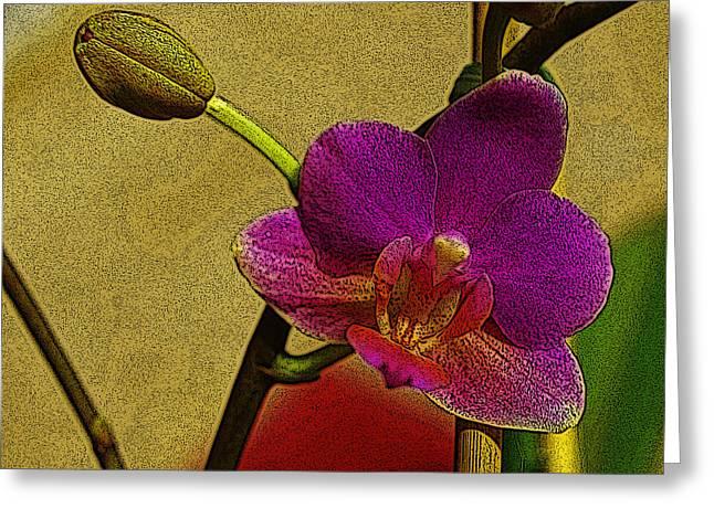 Floral Digital Art Digital Art Greeting Cards - Beauty in Bloom Greeting Card by Teri Schuster