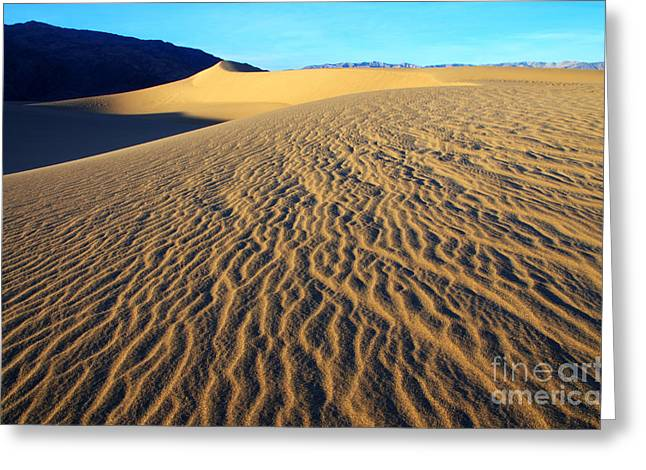Mountains Of Sand Greeting Cards - Beauty Of Death Valley Greeting Card by Bob Christopher