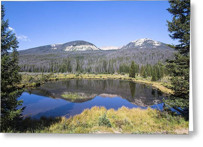 Stream Greeting Cards - Beaver Pond at Rocky Mountain National Park Greeting Card by Ellie Teramoto