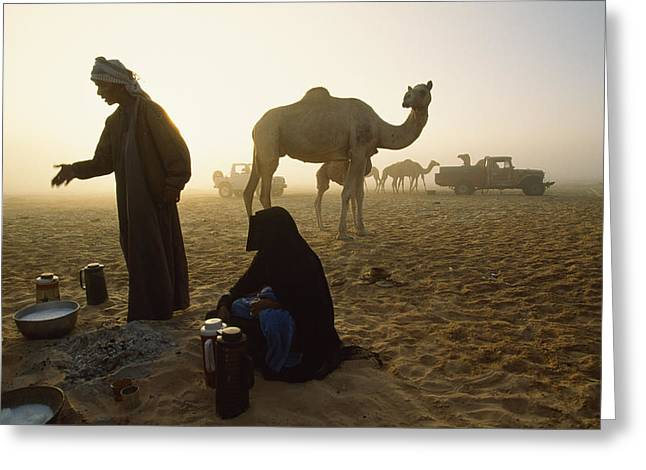 Mid Adult Women Greeting Cards - Bedouins Cooking On The Sand Greeting Card by James L. Stanfield