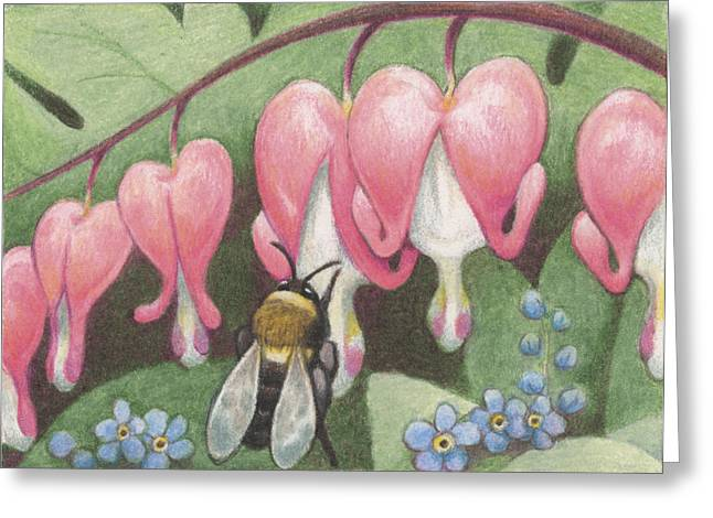 Amy S Turner Greeting Cards - Bee And Bleeding Heart Greeting Card by Amy S Turner