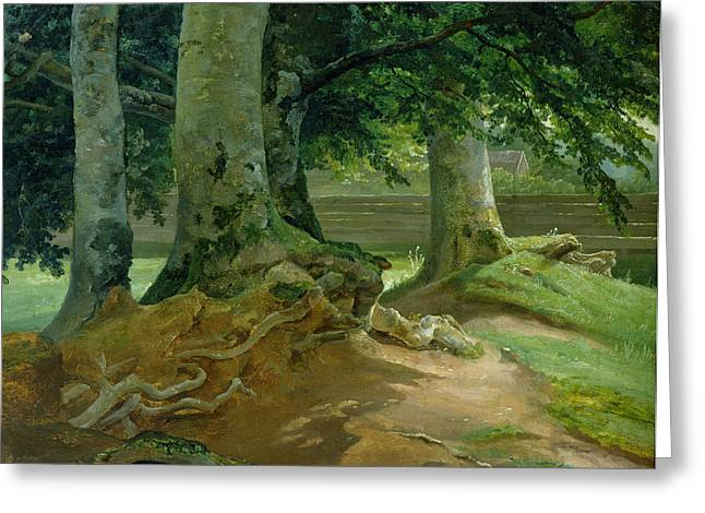 1828 Greeting Cards - Beech Trees in Frederiksdal near Copenhagen Greeting Card by Christian Ernst Bernhard Morgenstern