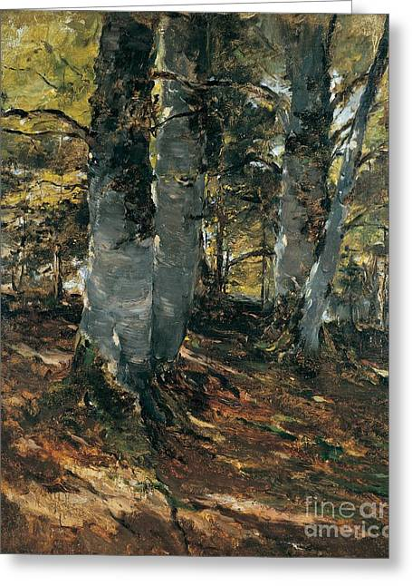Germany Paintings Greeting Cards - Beechwoods at Polling Bavaria Greeting Card by Frank Duveneck