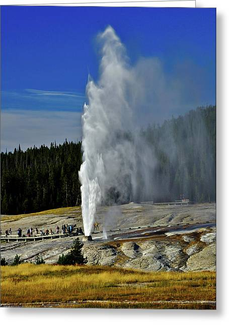 Beehive Greeting Cards - Beehive Geyser Greeting Card by Greg Norrell