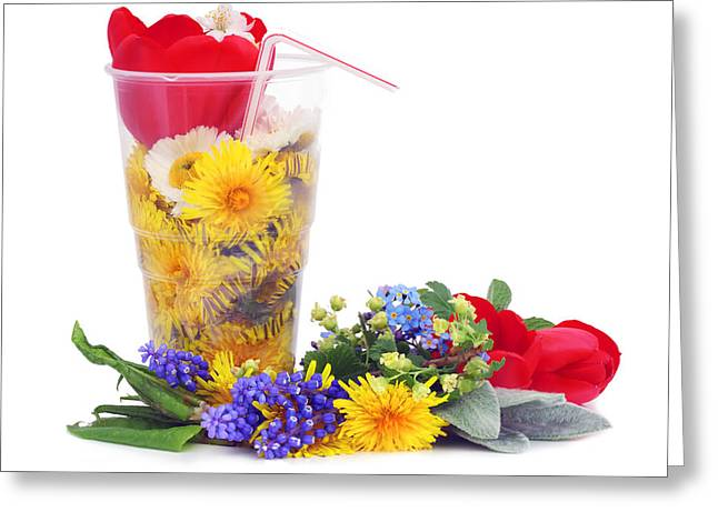 Flower Express Greeting Cards - Beer from May dandelions Greeting Card by Aleksandr Volkov