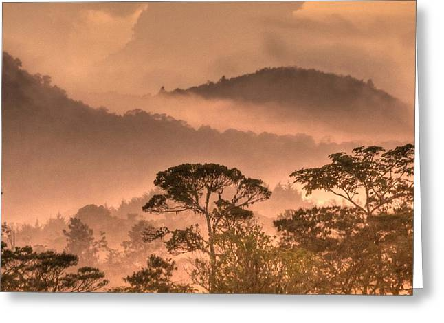 Expressionism Digital Art Greeting Cards - Before Sunset Greeting Card by Heiko Koehrer-Wagner