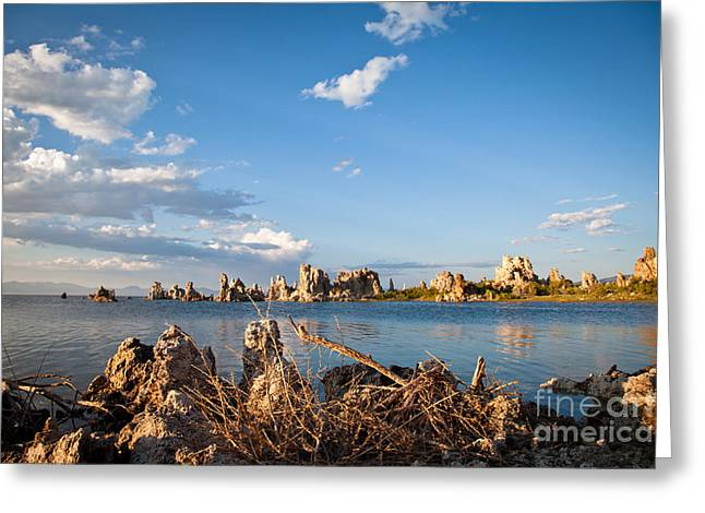 Alkaline Greeting Cards - Before sunset on Mono Lake Greeting Card by Olivier Steiner