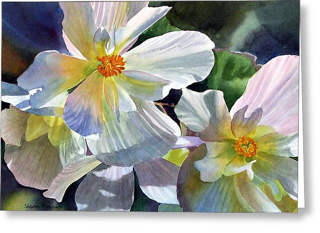 Watercolor! Art Greeting Cards - Begonia with Rainbow Shadows Greeting Card by Sharon Freeman