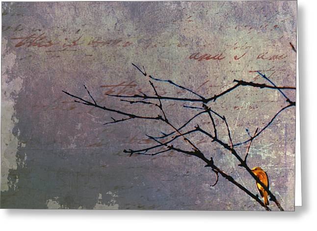 Yellow Warbler Greeting Cards - Behind every dark cloud.... Greeting Card by Nancy  Coelho