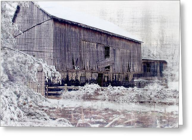 Barn Yard Photographs Greeting Cards - Behind The Barn Greeting Card by Kathy Jennings