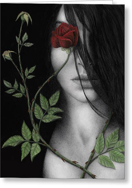 White Rose Greeting Cards - Behind What Beholds the Eye Greeting Card by Pat Erickson