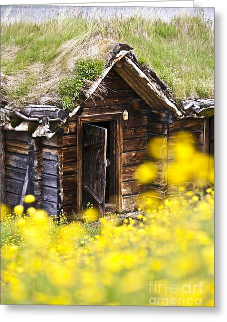 Frame House Greeting Cards - Behind Yellow Flowers Greeting Card by Heiko Koehrer-Wagner