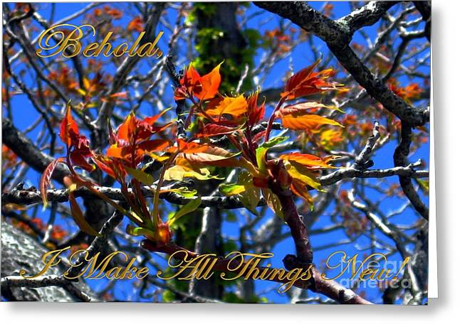 Red And Gold Leaves Greeting Cards - Behold I Make All Things New Greeting Card by Dale   Ford