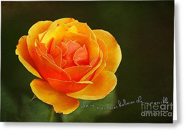 Apricot Greeting Cards - Believe the Impossible Greeting Card by Darren Fisher