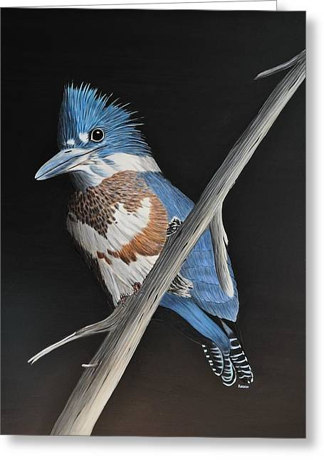 Kingfish Greeting Cards - Belted Kingfisher Greeting Card by Kenneth M  Kirsch