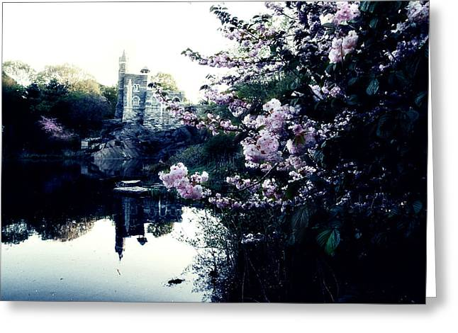 New York City Landscape Greeting Cards - Belvedere Castle Greeting Card by Ariane Moshayedi