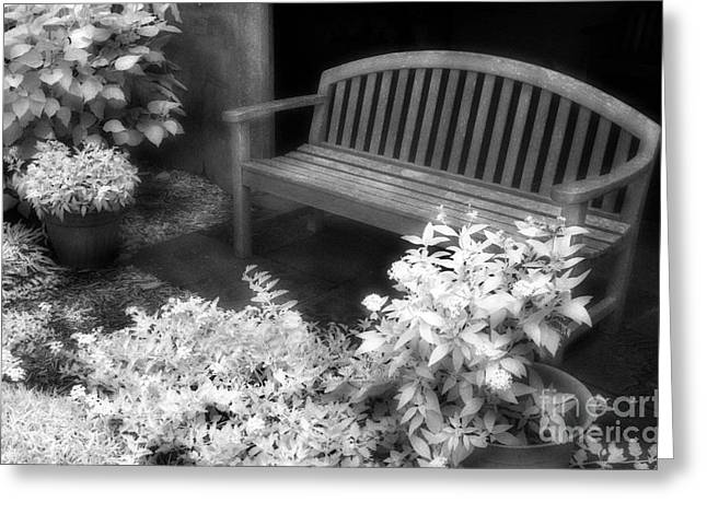 Jeff Holbrook Greeting Cards - Bench and Flowers Greeting Card by Jeff Holbrook