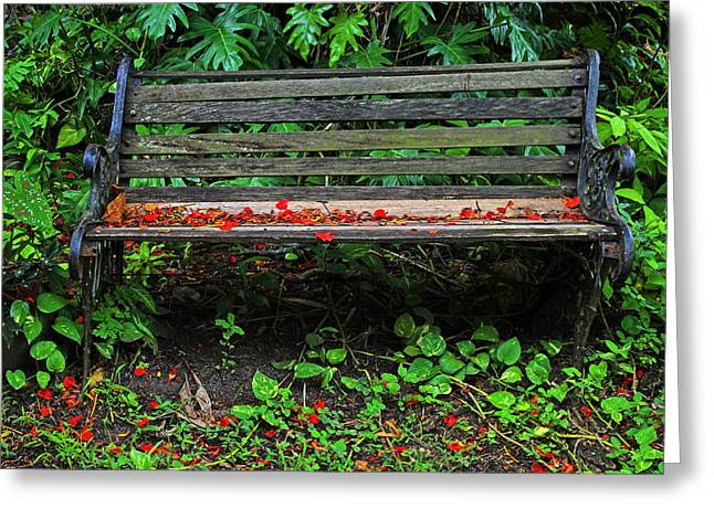 Lawn Chair Greeting Cards - Bench and Flowers- St Lucia. Greeting Card by Chester Williams