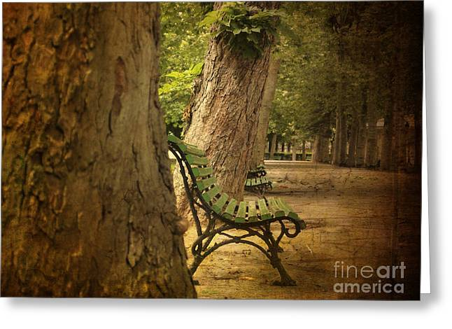 Vichy Greeting Cards - Bench in a park Greeting Card by Bernard Jaubert