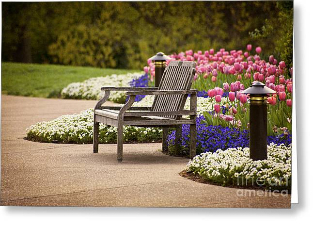 Best Sellers -  - Cheekwood Greeting Cards - Bench In The Park Greeting Card by Cheryl Davis
