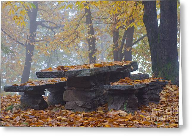 Wood Bench Greeting Cards - Benches and table in autumn Greeting Card by Mats Silvan
