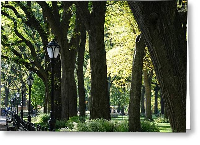 BENCHES TREES and LAMPS Greeting Card by ROB HANS