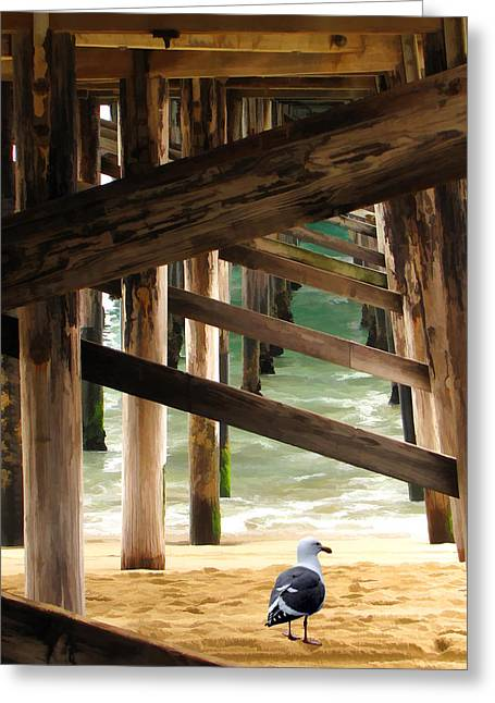 Beneath The Pier Greeting Card by Diane Wood