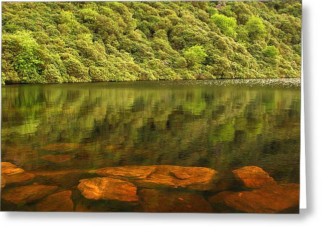Beneath The Water Greeting Card by Joe Ormonde