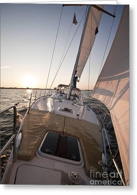 Sailboats In Harbor Greeting Cards - Beneteau 49 Sailing Yacht close hauled charleston sunset Sailboat Greeting Card by Dustin K Ryan