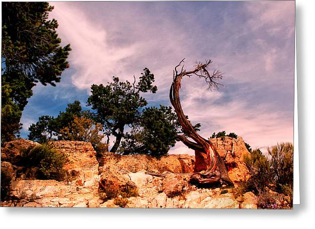The Grand Canyon Greeting Cards - Bent The Grand Canyon Greeting Card by Tom Prendergast