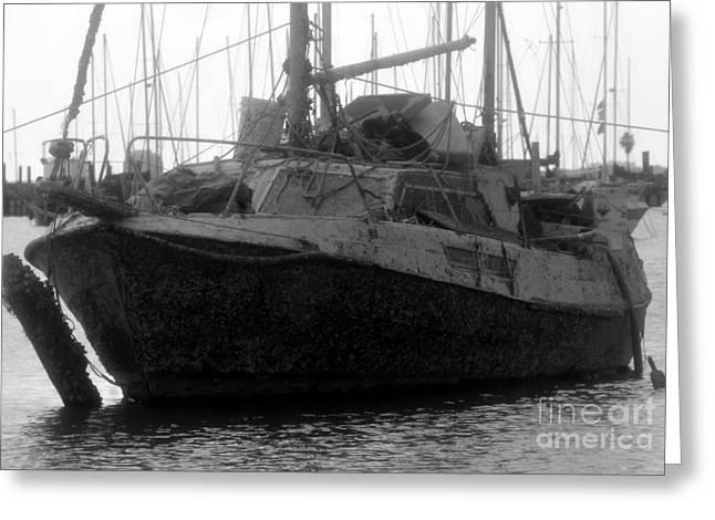 Sailing Ship Greeting Cards - Bermuda triangle Greeting Card by David Lee Thompson