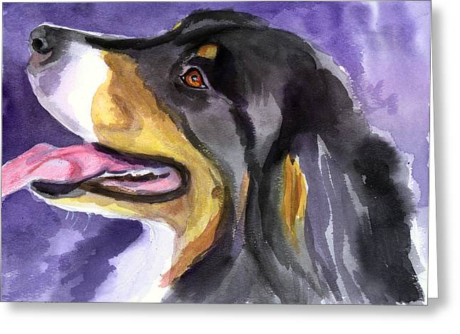 Bernese Mountain Dog Greeting Cards - Berner Portrait Greeting Card by Lyn Cook