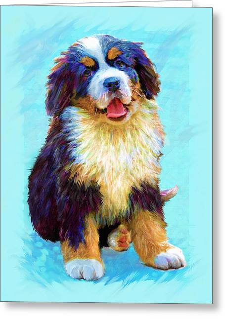 Puppies Digital Art Greeting Cards - Bernese Mountain Dog Greeting Card by Jane Schnetlage