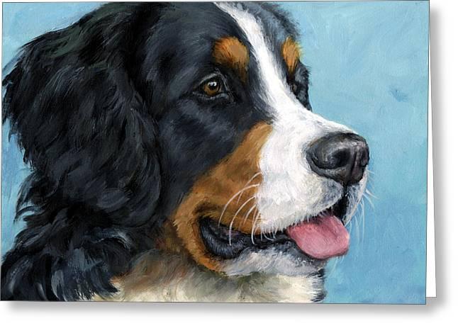Bernese Mountain Dog Greeting Cards - Bernese Mountain Dog on Blue Greeting Card by Dottie Dracos